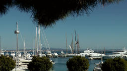 Spain Palma de Mallorca 077 big marina with yachts and sailing boats Footage