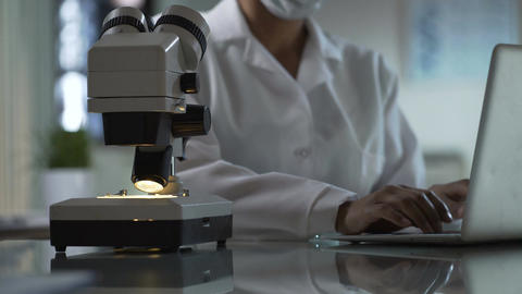 Lab worker writing observations on laptop and looking at sample under microscope Footage