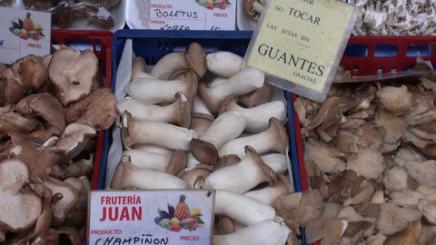 Assortment various edible fresh mushrooms fungi in Spanish market Footage