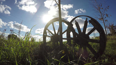 two old wooden horse carriage on field and autumn sunlight. Time lapse 4K Footage