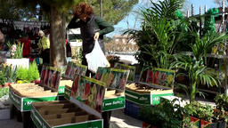 Spain Mallorca Island Sineu village 037 market stall with gardening goods Footage