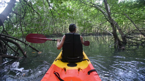 strong elder man rows kayak with paddles along river among mangrove trees Live Action