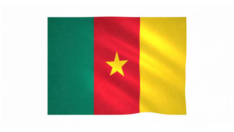 Flag of Cameroon waving on white background Animation