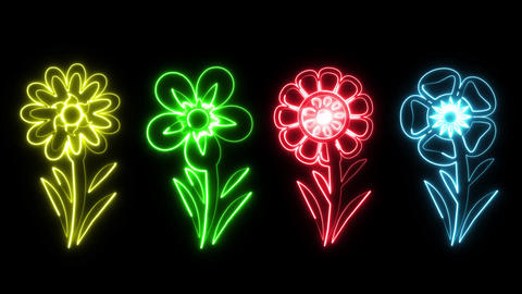 Colorful Neon Flowers Animation Graphic Element Type 1