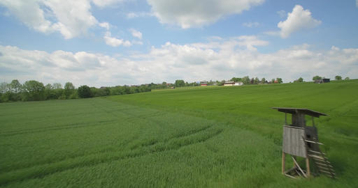 Aerial, High Speed Flight Above High Gras And Farmland, Germany Live Action