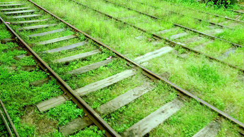 Train railway running through rural Sri Lanka Footage