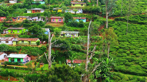 Panning video. Small village with colorful houses at tea plantations. Sri Lanka Footage