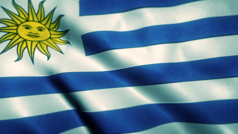 Uruguay Flag Blowing in the Wind Animation