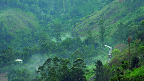 Train passes through foggy mountain landscape with tea plantations. Sri Lanka Footage