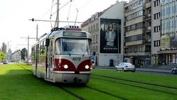 city: urban street - passing tram - cars - buildings - green grass Footage