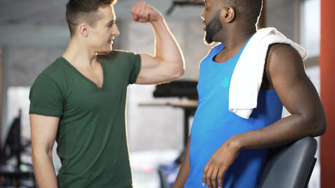 Competitive athletic men comparing and boasting biceps muscles, friends in gym Footage