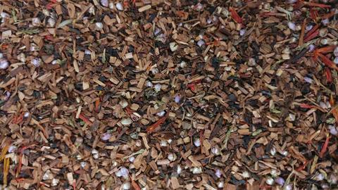 Tea leaves rotating v4 Footage