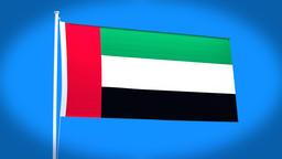 the national flag of UAE CG動画