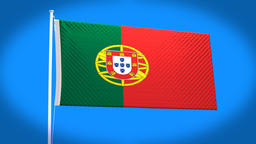 the national flag of Portugal CG動画