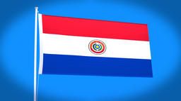 the national flag of Paraguay CG動画