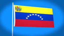 the national flag of Venezuela CG動画