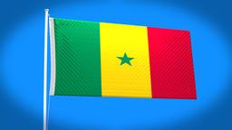the national flag of Senegal CG動画