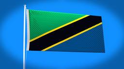 the national flag of Tanzania Animation