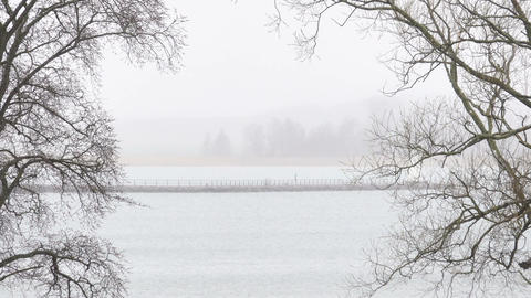 Fog and lake. Misty morning with tree branches and water. Tranquil nature scene Footage