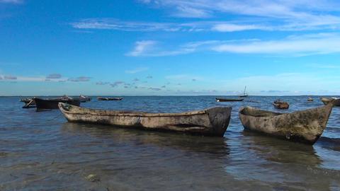 Morning Mafia island. Tanzania. Of the Indian ocean Image