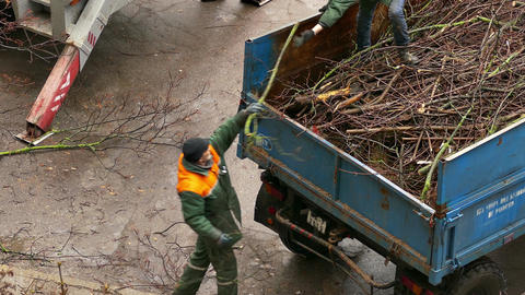 4K City Service Worker Adds Sawed Branches of Trees in Tractor's Trailer Footage