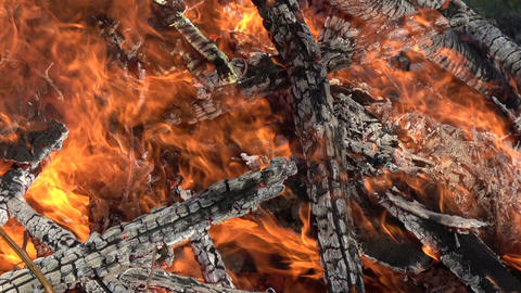 Bonfire with firewood abstract background Footage