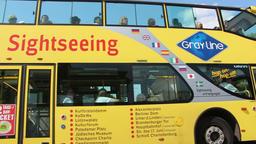 Sightseeing bus in Berlin Footage