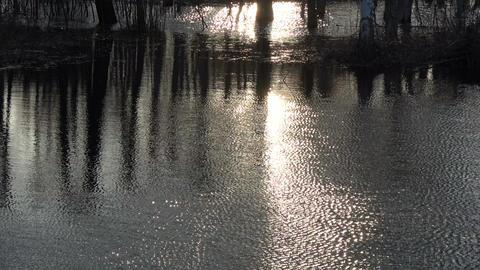 Dark evening sunset flood water background Footage
