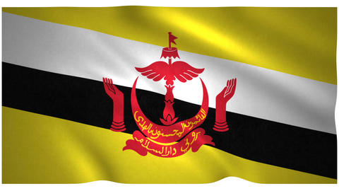 Flag of Brunei waving on white background Animation