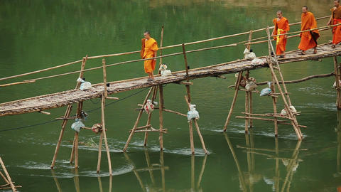 Monks walking bamboo bridge Footage