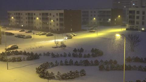 snow blizzard in city evening. Light street snow pine trees. 4K Footage