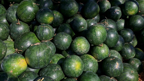 Closeup Big Watermelons Pile under Sunlight on Street Market Footage