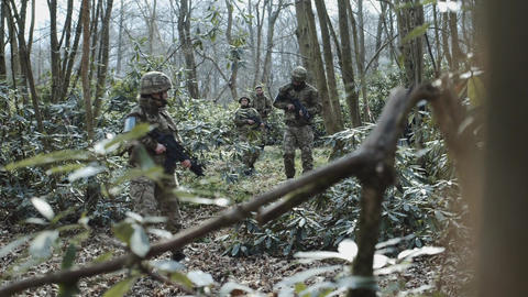 Army Exercise in Forrest 画像