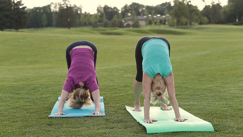 Fit ladies standing in donward facing dog pose Live Action