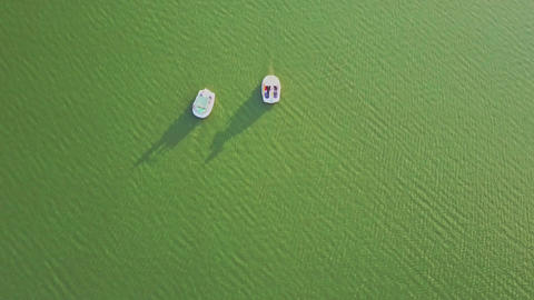 Aerial View White Catamarans Float on Quiet Bright Green Lake Footage