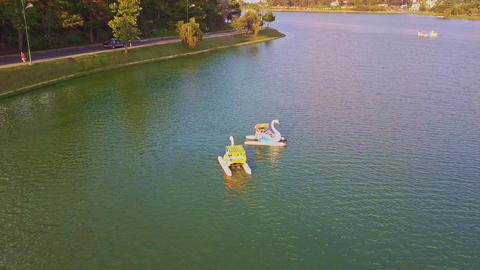 Flycam Shows Closely White Swan Catamarans on Sunset Lake Footage