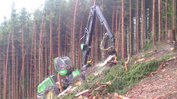 Harvester in a forest Filmmaterial