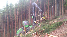 Harvester in a forest Footage