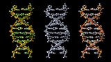Turning DNA stock footage