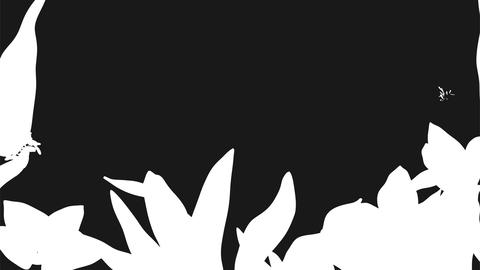 growing abstract flowers frame Stock Video Footage
