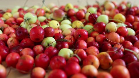 paradise apples Stock Video Footage