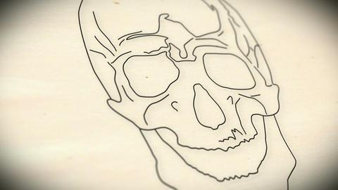 Human Skull v 2 1 Stock Video Footage