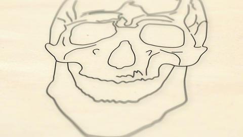 Human Skull v 2 3 Stock Video Footage