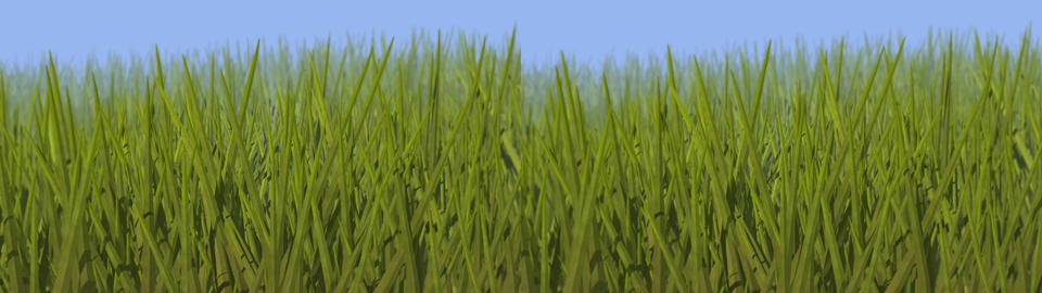 Grassy Field Stereo 3D Stock Video Footage