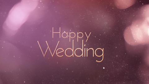 Wedding Title 5 stock footage