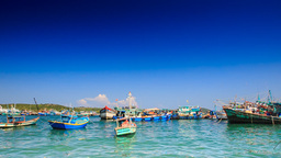 Distant View of Vietnamese Fishing Boats in Bay against Sky Footage