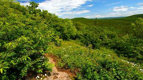 Porcupine Mountains Wilderness State Park Footage