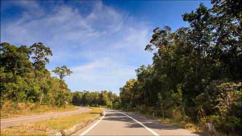 Camera Moves along Separate Line on Highway between Trees Footage