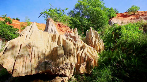 Strange Rock Formations Pitted by Wind among Rare Plants Live Action