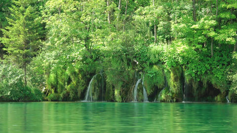 Plitvice Lake and Forest Waterfalls Footage